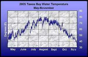 Water Temperature- 2005